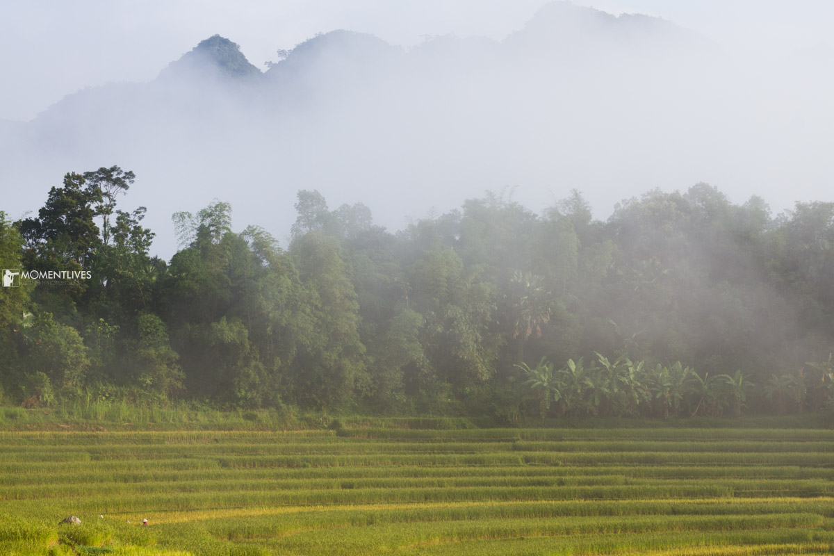 A photo tour to misty Pu Luong in northern Vietnam