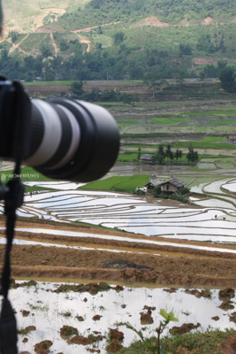 Rice-growing-photo-tour