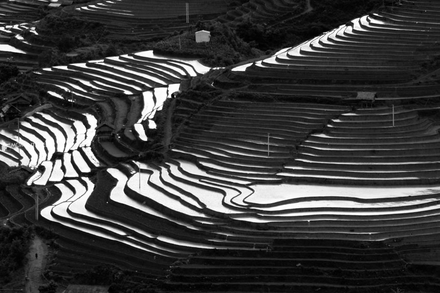 Photo tour to the rice terraces