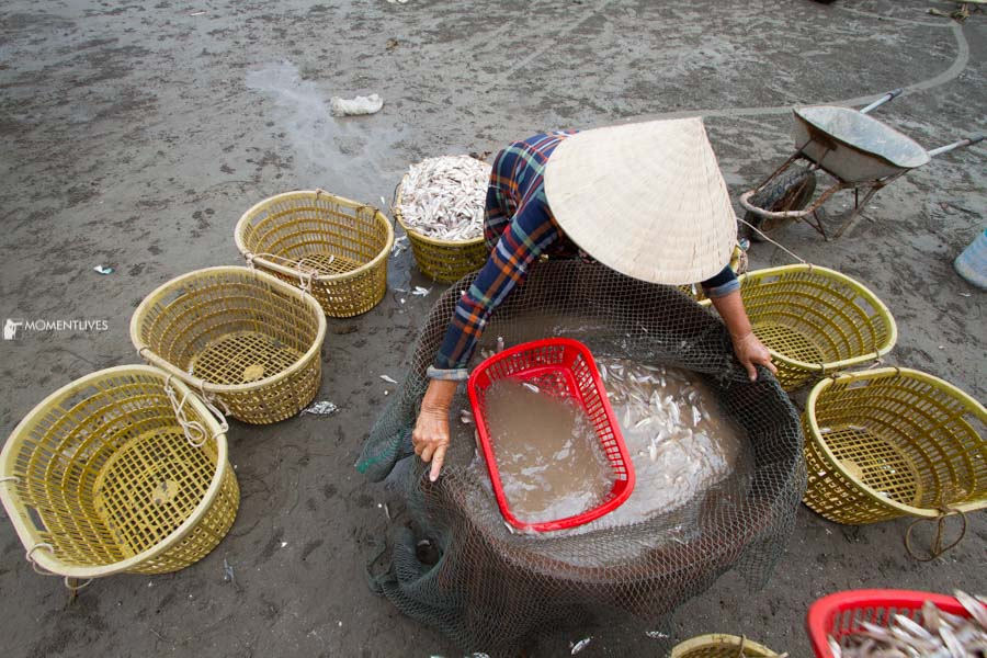A lady washing fish by seaside