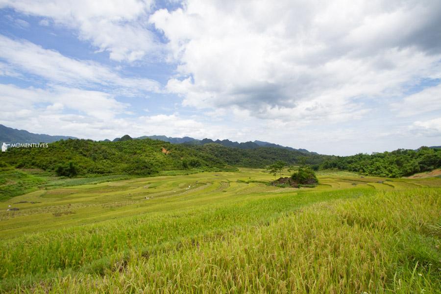 Beautiful scenery of Pu Luong
