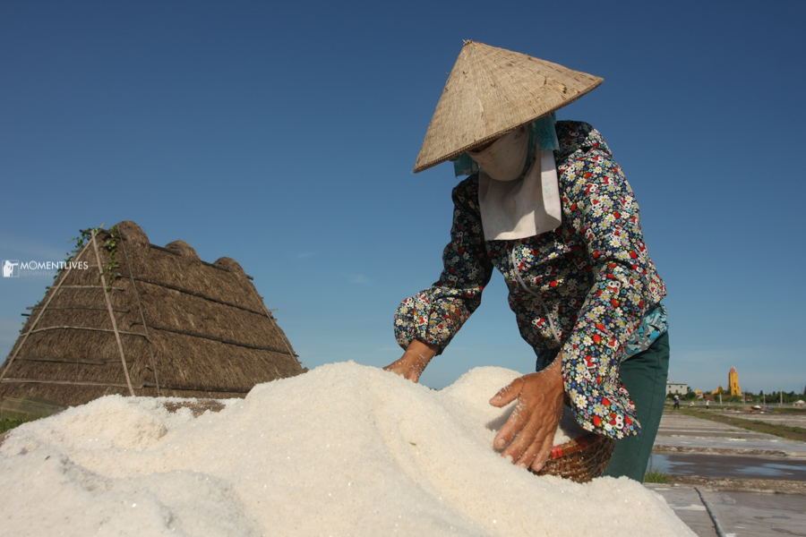 Hand collecting salt in Nam Dinh