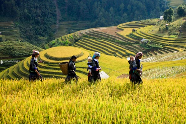 Ladies walking in Mu Cang Chai