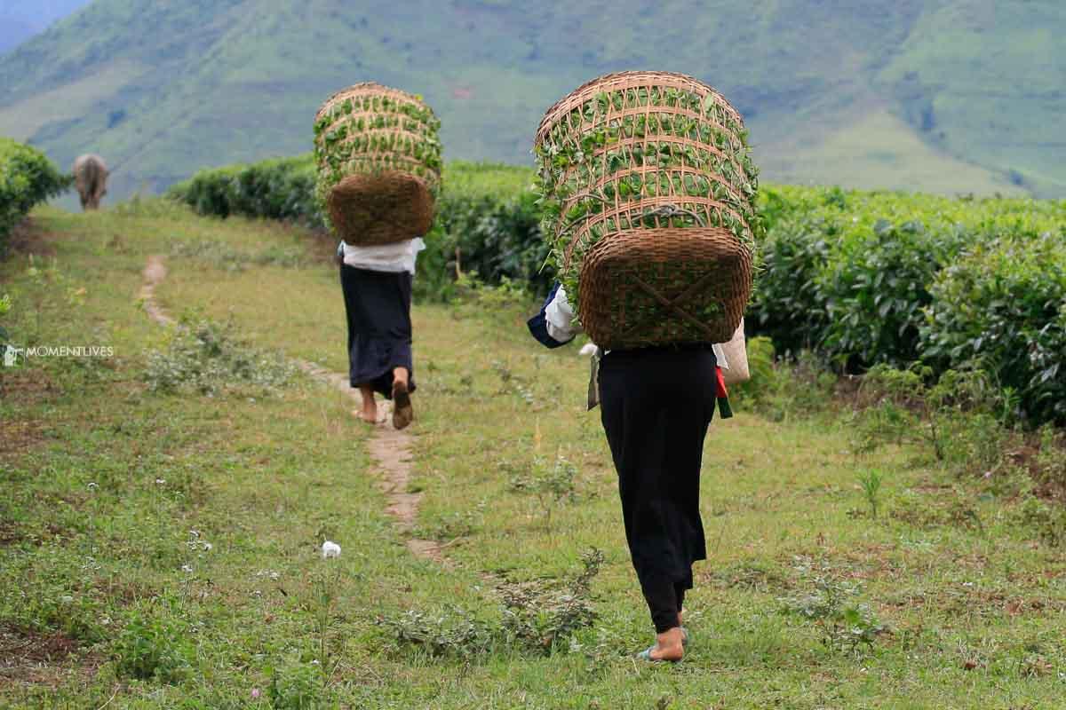 Photography tour depicting landscape of Vietnam