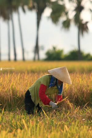 Thanh-Hoa-travel