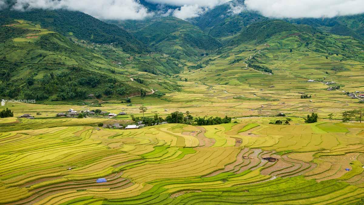 Landscape of Tu Le, Vietnam