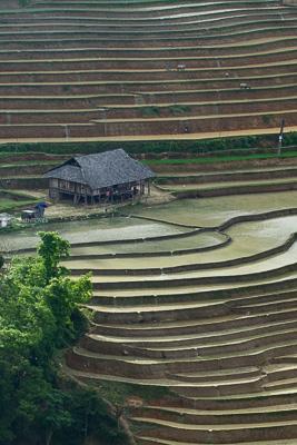 Hoang-Su-Phi-travel