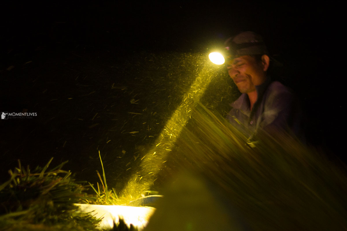 Farmer in Pu Luong working at night