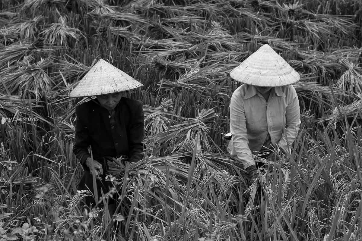 Vietnam photography workshop in Pu Luong