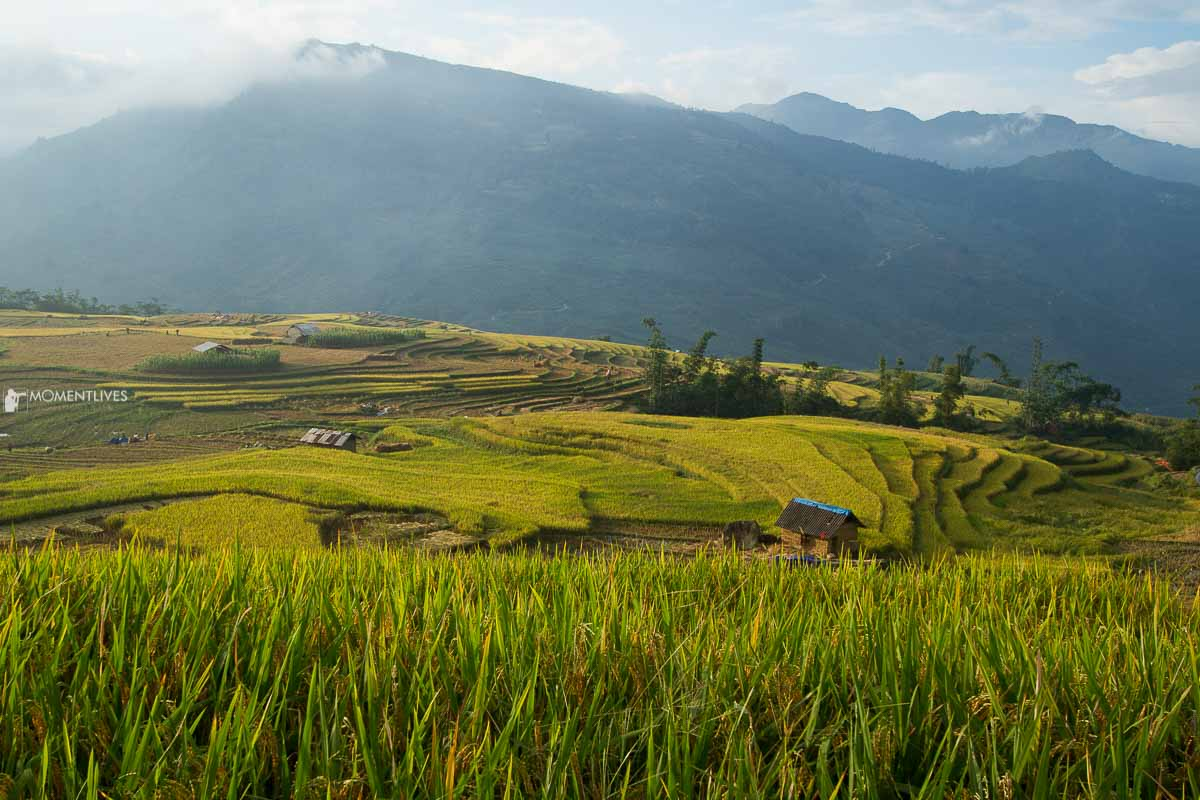 Photo tour to the rice terraces of North East Vietnam