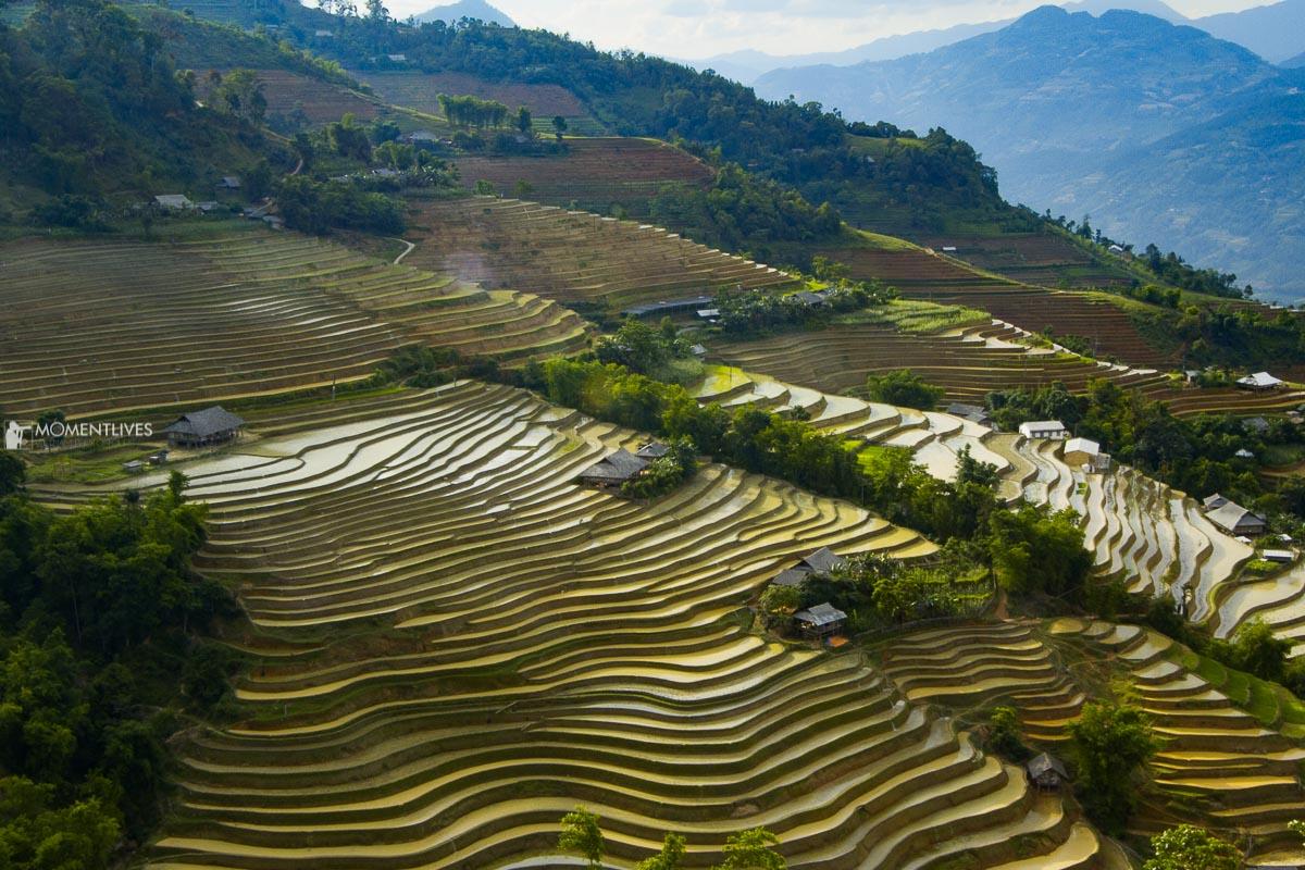 Rice terraces in Ban Luoc, Hoang Su Phi