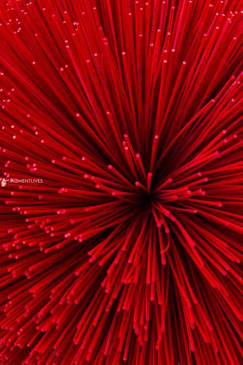Making-incense-sticks-Quang-Phu-Cai