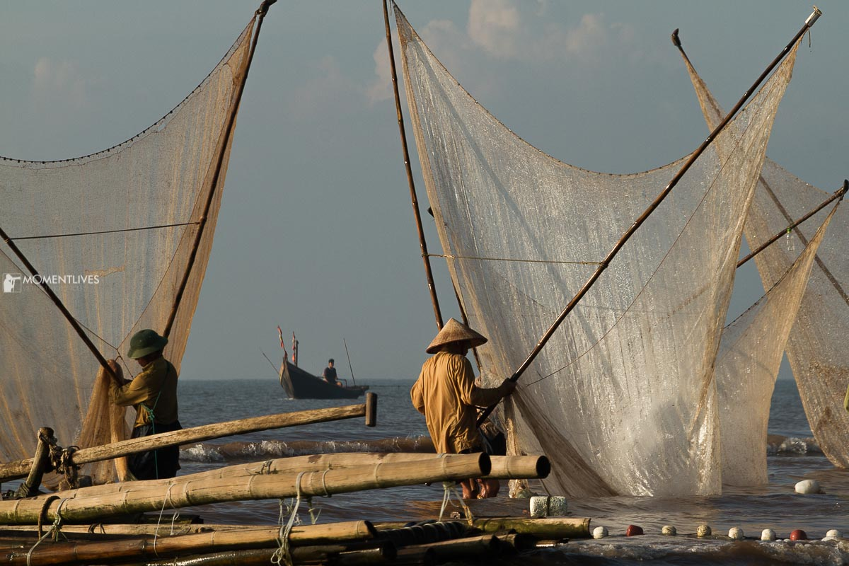 Some men scooping for fish by the seaside of Nam Dinh