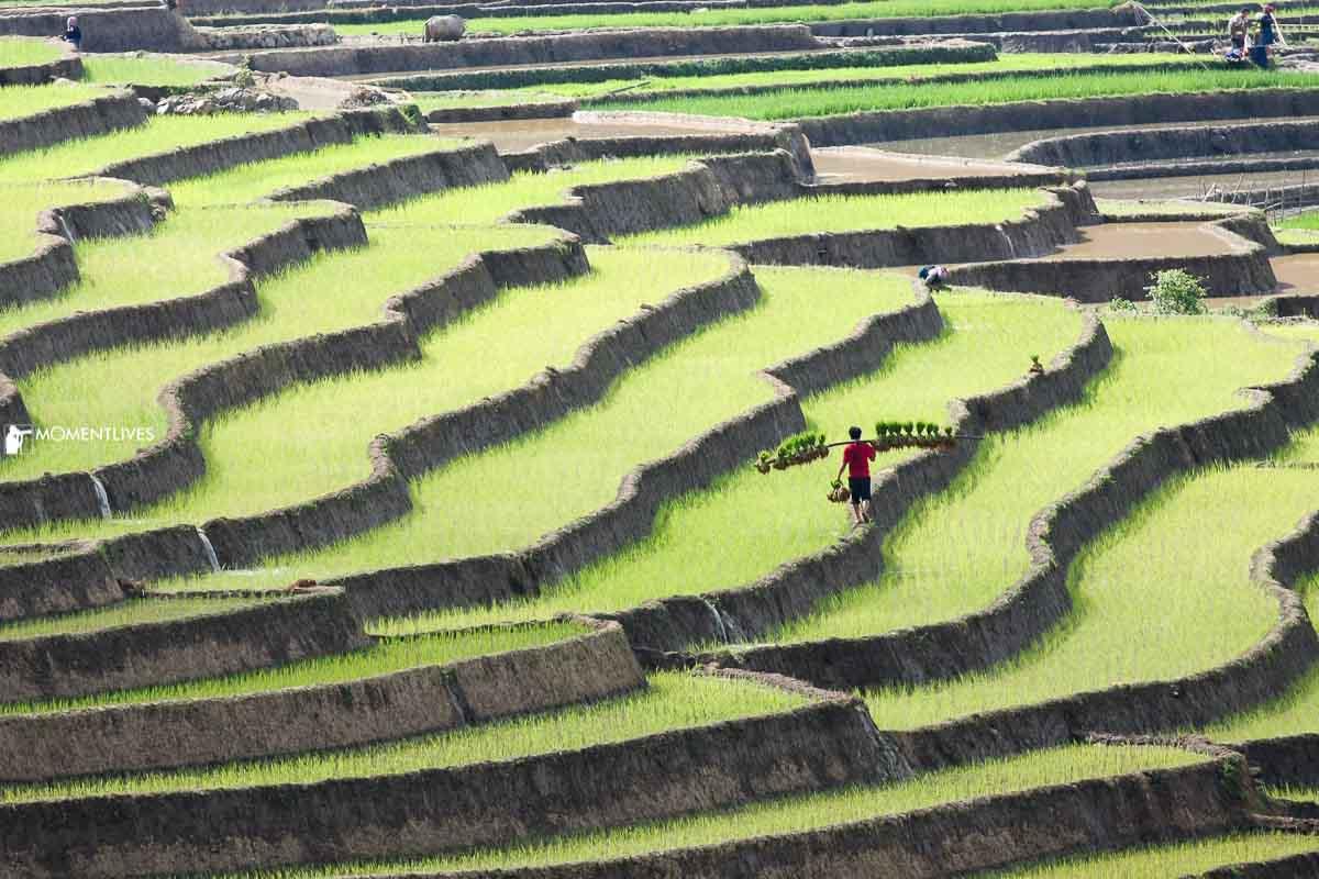 Photography tour in Northwest Vietnam