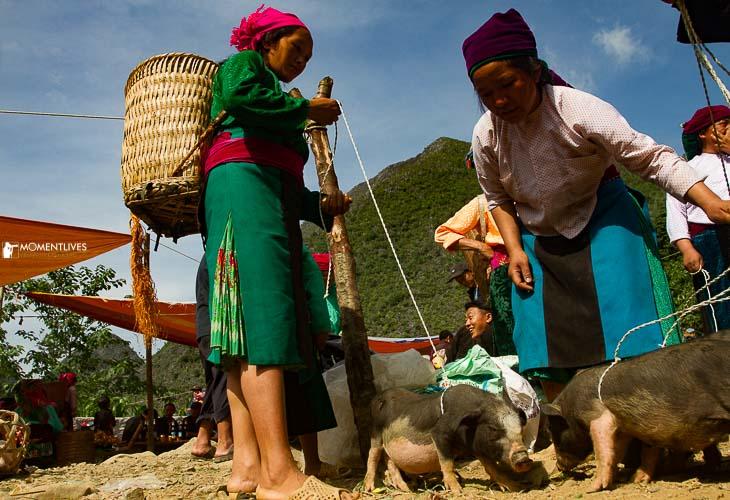 Vietnam travel photography tour to Sa Phin market