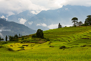 Photography tour to Y Ty, Vietnam